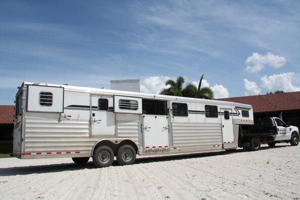 What Is The Cost Of Transporting A Horse